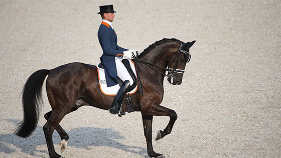 paardensport dressuur